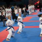 Championnat Monde KaratŽe - Paris