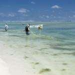 Pecheurs sur l'Ile  aux cocos - Rodrigues