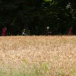 Procession a l'horizon - Championnat France Tir Campagne - Auver