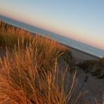 Dune flamboyante - St Jean de monts