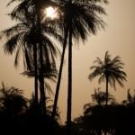 Lever du jour a Kassel - Casamance - Senegal