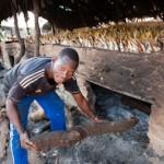 A bout de bois - Fumage des poissons - Kafountine - Senegal