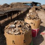 Colis poissons seches - Casamance - Senegal