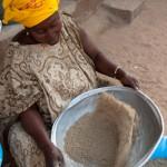 Dans le mil - Casamance - Senegal