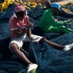 Dans les mailles du filet - Kafountine - Senegal