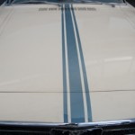 Mustang sport chic - Las vegas motor speedway - Nevada