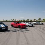 Mustang et Snake du desert - Las vegas motor speedway - Nevada