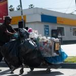 Ville propre - Venice - Californie