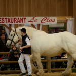 Cheval ou pas - Salon Agriculture - Paris
