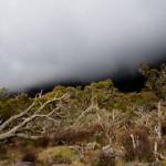 Plateau kelval -Mafate - La Reunion
