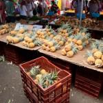 Ananas victoria - Marche de St Paul - La Reunion