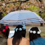 Tetes couronnees du parc Yoyogi - Tokyo