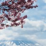 Mont Fuji - Kawaguchiko