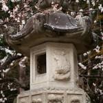 Toro - Fuji Omuro sengen shrine - Kawaguchiko