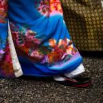 Dans les pas des maries - Meiji jingu - Ise - Japon