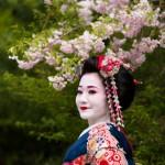 Pale beaute - Geisha 芸者 -  Kyoto