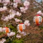 Lampions du parc Maruyama - Kyoto