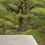 Ordre et desordre - Ginkaku ji - Kyoto