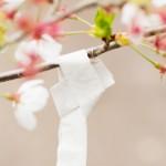 Priere fleurie - Kyoto