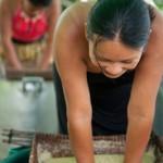 Manioc presse pour le Cachiri - Guyane
