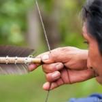 Prise de corde d'arc Wayampi - Guyane