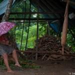 Filtrage du manioc avec la couleuvre - Guyane