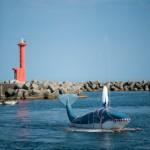 Phare de la baleine - Kujira matsuri - Osatsu - Japon