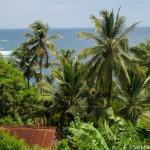 Des cases tolees au milieu de nulle part - La Dominique