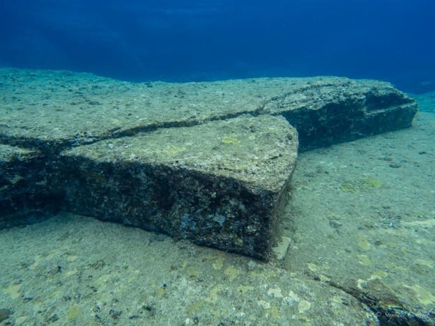 La tortue - Ruines sous marines de Yonaguni